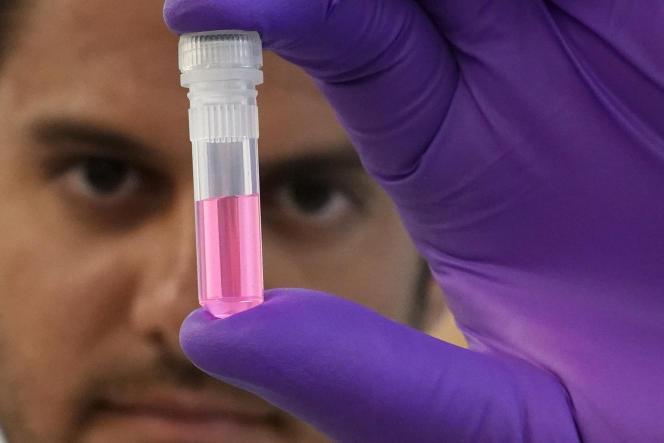 Un exemple d'échantillon d'ADN dans leservice de médecine légale de la ville de New York, le 6 septembre 2018.