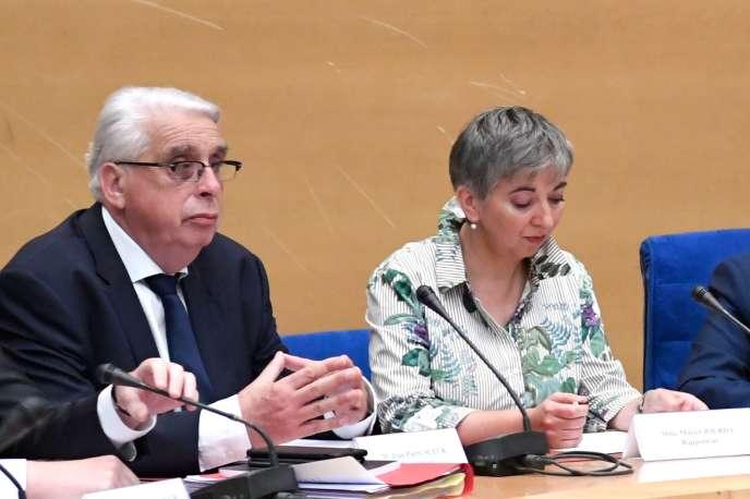 Jean-Pierre Sueur et Muriel Jourda (ici le 12 septembre) présenteront leurs recommandations, mercredi à 11 heures.