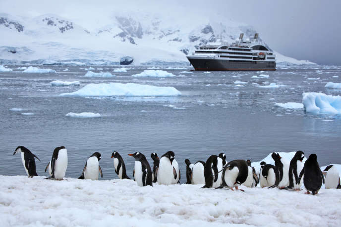 Dans l'Antarctique.