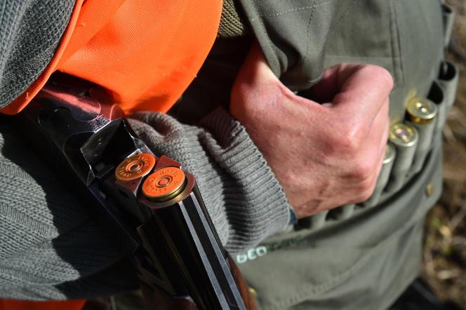 Selon l'étude de l'ECHA, les chasseurs utilisent à eux seuls 21000 tonnes de plomb chaque année, en Europe.