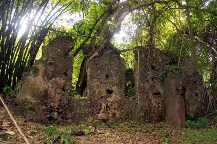 Les murs d'un bâtiment de l'ancienne sucrerie de Soulou, près de M'Tsangamouji, sur le territoire français de Mayotte.Le cyclone de 1898 a détruit en partie l'exploitation et l'usine.
