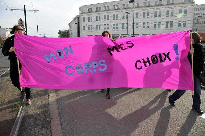 «Donnons-nous les moyens de vérifier que la loi est bien appliquée sur tout le territoire et que l'accès à l'IVG est assuré pour toutes les femmes» (Novembre 2014 à Nantes: manifestation pour défendre le droit à l'IVG lors de la célébration du 40e anniversaire du vote de la loi de Simone Veil).