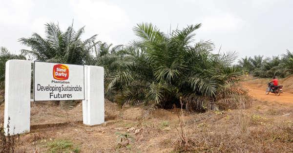 pour-la-réforme-foncière-au-liberia-«le-plus-difficile-commence»