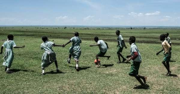 Les enfants de la diaspora tentés par l'Afrique de leurs parents