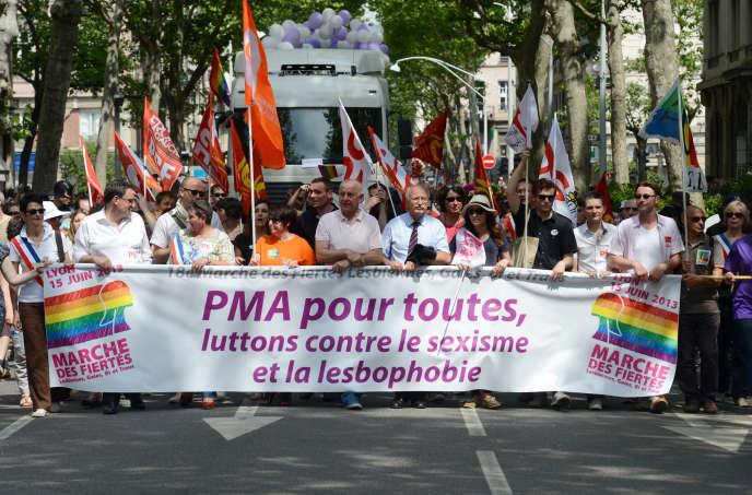 Manifestants pro-PMA à la Gay Pride de Lyon, le 15 juin 2013.