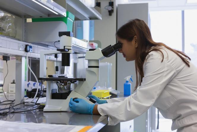 Une grande disparité existe entreles filières en termes d'embauche et de financement des thèses, les scientifiques étant plus courtisés que les chercheurs en sciences humaines et sociales.