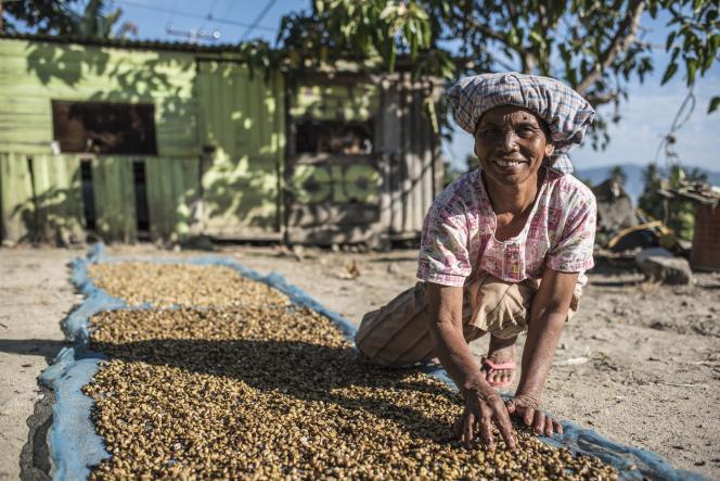 «Le café équitable se vend plus cher, les agriculteurs gagnent mieux leur vie et la terre se régénère.»