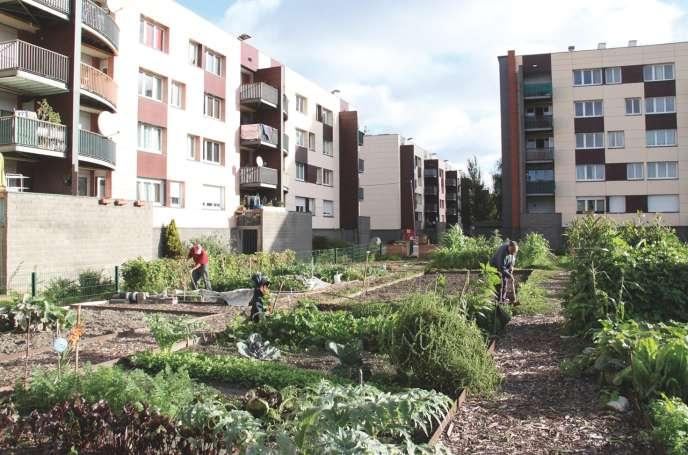 Des jardins partagé à Grande-Synthe en 2018.