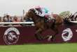 (FILES) In this file photo taken on October 1, 2017 Jockey Frankie Dettori, on his horse Enable, crosses the finish line to win the 96th Qatar Prix de l'Arc de Triomphe horse race at the Chantilly racecourse.   / AFP / THOMAS SAMSON