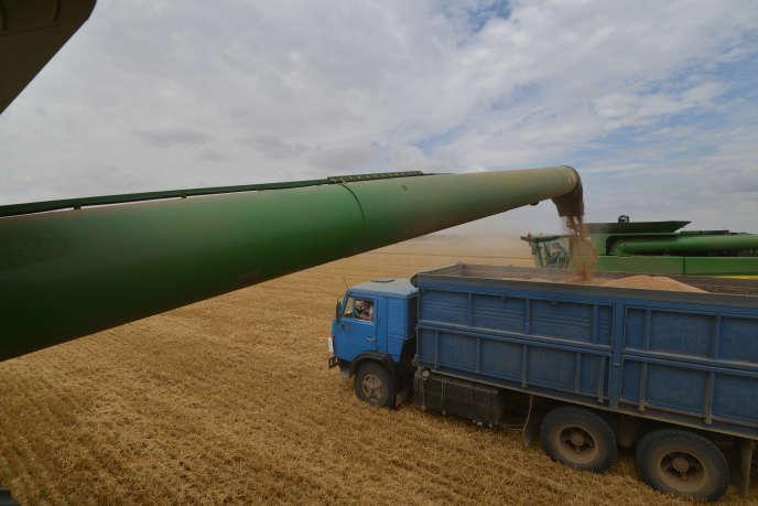 Récolte de blé dans la région de Stavropol, dans le sud de la Russie, en juillet 2014.