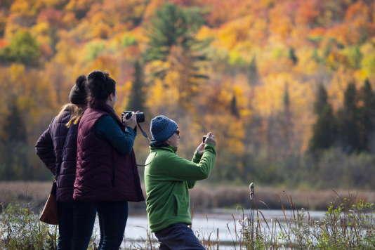 Les couleurs de l'automne au parc Gatineau, à Chelsea, au Québec, le 14 octobre 2018. (/Justin Tang/The Canadian Press via AP)
