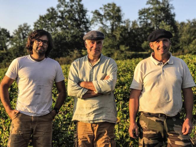 Mark Angeli (au centre, avec son fils Martial, à gauche, et son associé Bruno Ciofi) est contraint à la mention vin de France. « Cela me fait mal au cœur de ne pas pouvoir écrire le lieu sur l'étiquette », explique-t-il.