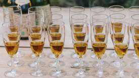 Rows of glasses of champagne