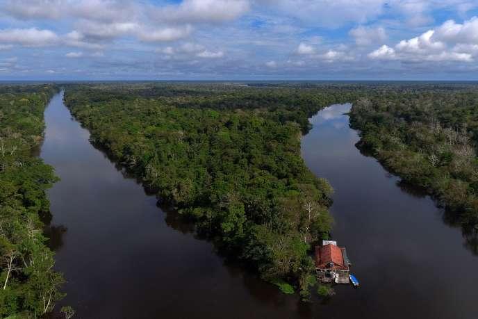La réserve Mamiraua, au Brésil, est convoitée par le nouveau président du pays pour ses ressources naturelles.