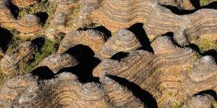 Dans le parc national de Purnululu, la chaîne des Bungle Bungle inspire l'artiste aborigène Sade Carrington.