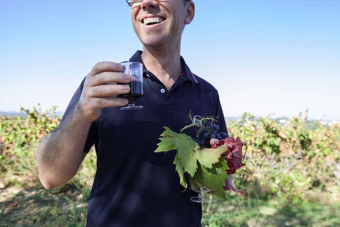 Dans les vignes du Domaine de Puilacher (Hérault), le 21 octobre.