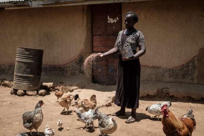 Monica, 30 ans, est l'une des bénéficiaires du revenu universel versé par l'ONG Give Directly dans le cadre d'une étude au Kenya, dans la région deBondo (ouest). Grâce aux 19,50 euros qu'elle touche chaque mois, elle a investi dans l'élevage de poulets.