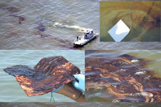 Exemples de pollution dans le golfe du Mexique