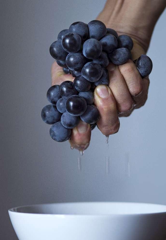 Coté raisin,prenez le meilleur, pas les gros grains du supermarché.