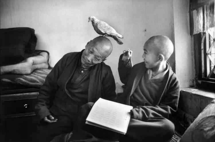 """«Elle poursuit : """"Reconnu comme tel, un jeune garçon allait entrer au monastère comme moine pour y recevoir l'éducation qui convient. J'étais fascinée par cette tradition de transmission de la connaissance et d'éducation d'une telle élite ; je me suis donc demandé s'il y avait d'autres enfants reconnus comme """"tulkus"""", des lamas réincarnés"""".»"""