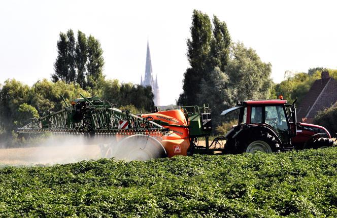Epandage de pesticides dans un champ à Cassel, dans le nord de la France, le 16 août 2013.