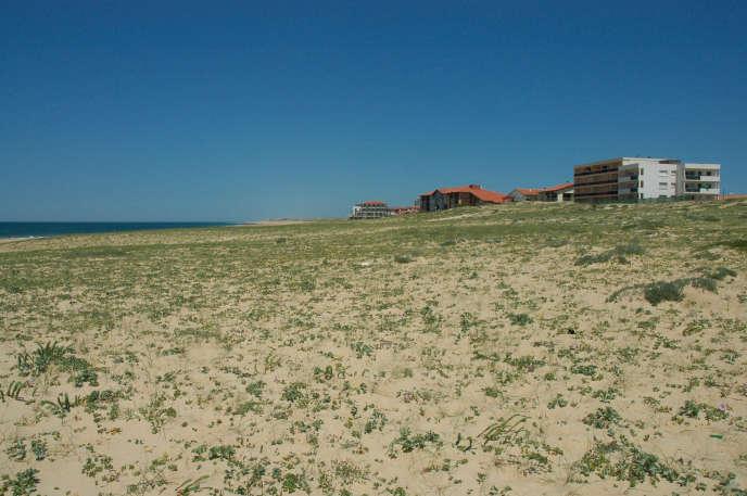 Sur la plage de sable de Hossegor, dans les Landes.