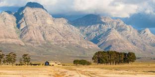 Dans le veld sud-africain.