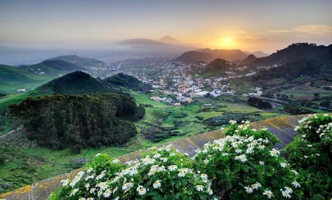 A Tenerife (Espagne), les amoureux des plantes et des jardins trouveront leur bonheur.