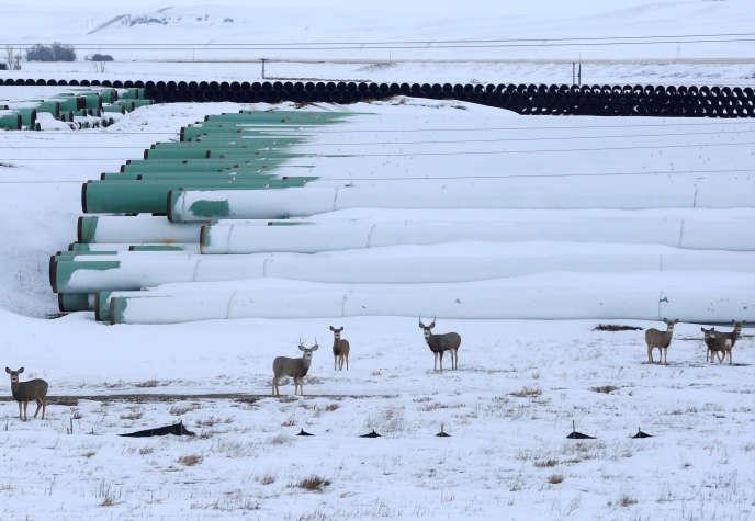 Sur le site de stockage de cylindres destinés au pipeline Keystone XL, à Gascoyne, dans le Dakota du Nord, en janvier 2017.