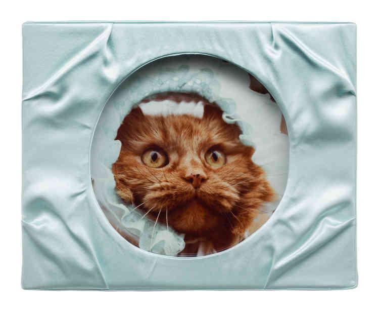 « Untitled (Cat) A», 2013.