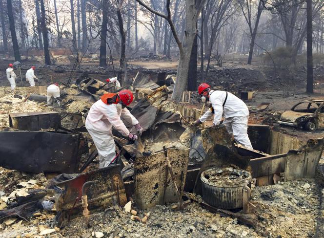 Des volontaires à la recherche de cendres d'origine humaine après le passage de l'incendie, à Paradise (Californie), le 15 novembre.
