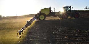 «Parmi tous les accidentés», 15% des agriculteurs et 9% des artisans, commerçants et chefs d'entreprises expliquent «qu'ils n'ont pas été indemnisés».