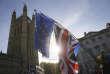 Rassemblement anti-Brexit devant le Parlement britannique, à Londres, le 14 novembre.