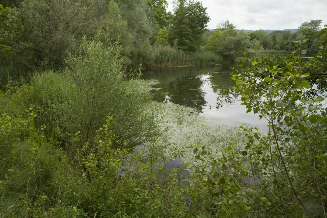 La réserve de vie sauvage des Deux lacs, dans la Drôme.