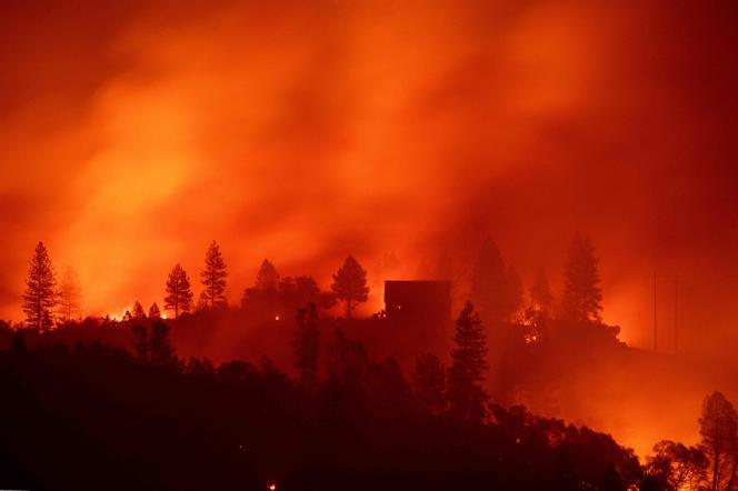 L'incendie de Camp Fire en Californie a ravagé des dizaines de milliers d'hectares.