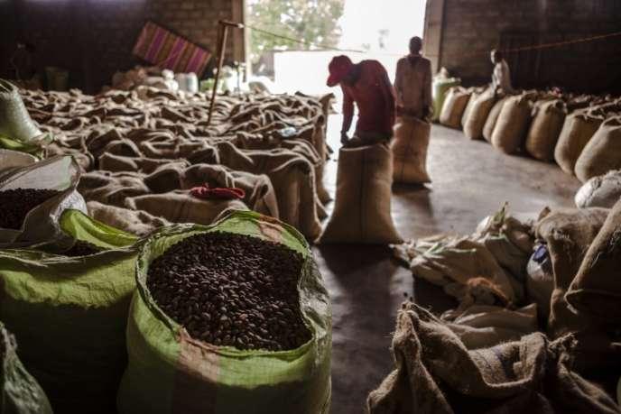 Une usine de production de fèves de cacao, à Beni, dans le nord-est de la République démocratique du Congo, en novembre 2016.