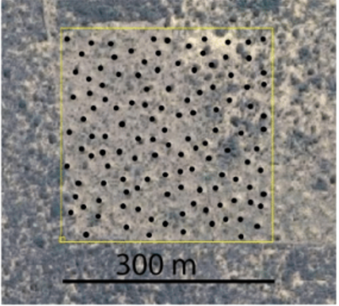 Les monticules sont visibles sur Google Earth.