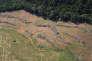 Destruction illégale de la forêt dans l'Etat du Para, au Brésil, en 2014.