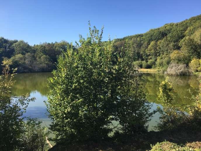 L'étang, dont les abords ont été récemment réaménagés, et dont le charme agit immédiatement sur le promeneur.