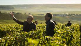 Richard Geoffroy et Vincent Chaperon, dans les vignes d'Hautvillers sur le domaine Dom Pérignon, le 13 juin 2018.