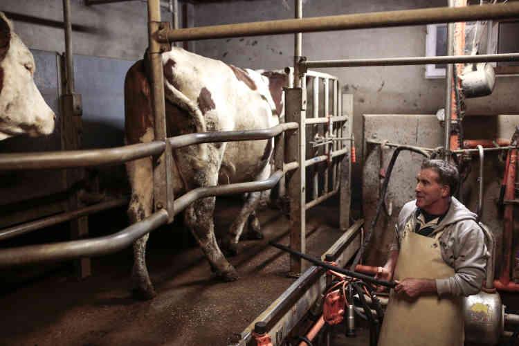 Le cuisinier se procure les produits laitiers à la Fromagerie Levynoise, située à Fleurieux-sur-l'Arbresle, à 5 km de Sourcieux-les-Mines.Christian Girardon, 51 ans, trait les vaches le soir, et sa femme Aurore prépare les produits laitiers le lendemain matin.