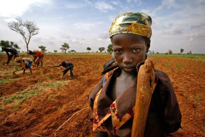 Une jeune fille nigérienne dans le sud du pays, en juillet 2005.