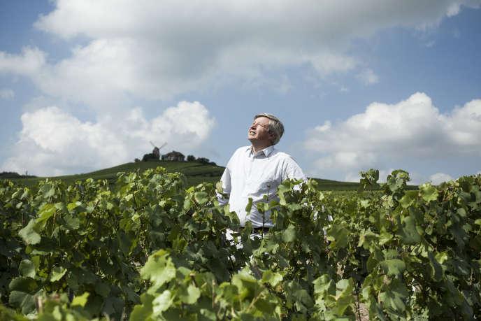 Jean-Baptiste Lécaillon,chef de cave de Roederer, le 11 juillet 2018 à Reims (Marne). Il est photographié dans le vignoble Le Poirier Saint-Pierre, le premier à avoir été acheté par Louis Roederer en 1841.