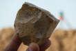 Le noyau d'une pierre taillée, exhumée du site algérien d'Aïn Boucherit, dont ont été tirés des éclats coupants.