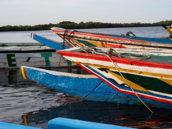 Classés à l'Unesco, les paysages du delta du Sine Saloum s'étendent sur 180000hectares au sud du Sénégal.
