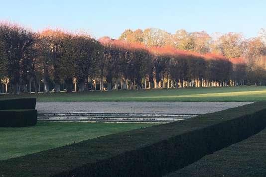 Vue du parc du château de Bénouville, avec ses haies d'if, son parterre de gazon et son allée de tilleuls.