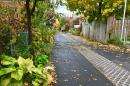 Une ruelle verte de l'arrondissement Rosemont La Petite Patrie à Montréal. L'équivalent de neuf terrains de football a été «déminéralisé» dans cet arrondissement, soit quelque 20 km linéaires de béton et d'asphalte remplacés par des végétaux.