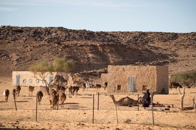 Le village de Ouâd Initi, au sud-est de la Mauritanie, en novembre 2018.
