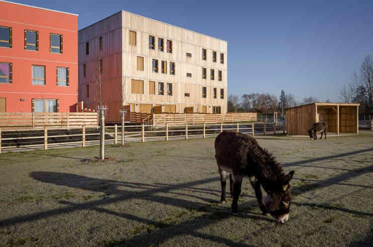 Des jardins familiaux, des espaces agricoles et horticoles s'étendent au pied des immeubles de logements. L'horticulteur n'utilise pas de tracteur, et le «pédibus» s'est transformé en «asinobus»: les ânes portent les cartables des enfants.