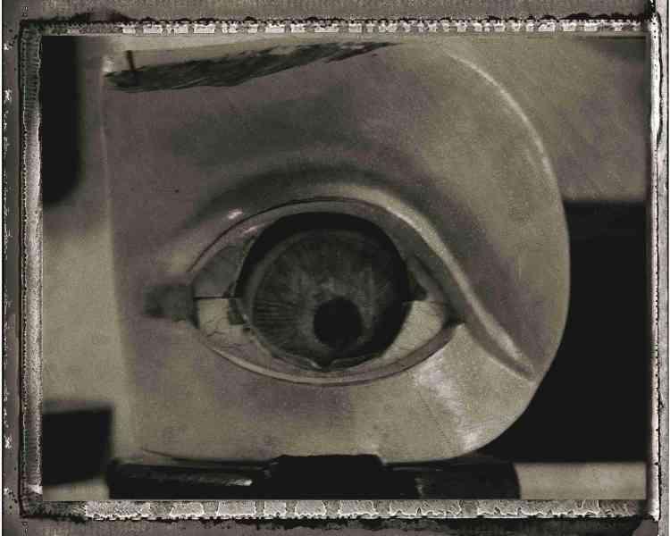 «C'est une mécanique redoutable que nous portons en haut du visage. Une mécanique où s'imbriquent la conjonctive bulbaire, la gaine interne du nerf optique, le grand cercle de l'iris, le sinus veineux de la sclère, l'angle irido-cornéen, la pupille, la cornée, le limbe cornéen, le corps vitré et le canal hyaloïdien.»